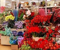 Цветы москва купить магазины краснодар купить цветы многолетники