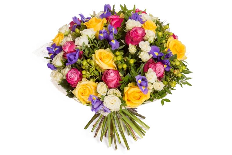 Каталог всех садовых цветов и описание